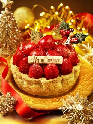 2016_christmas_luxury_tate_k-310